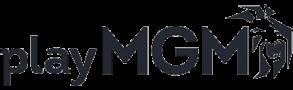 playMGM Sports App NJ