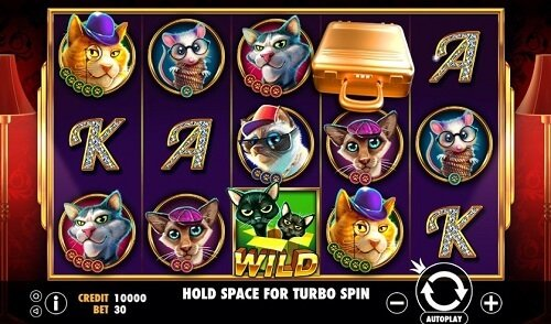 The Catfather Pragmatic Play slot game